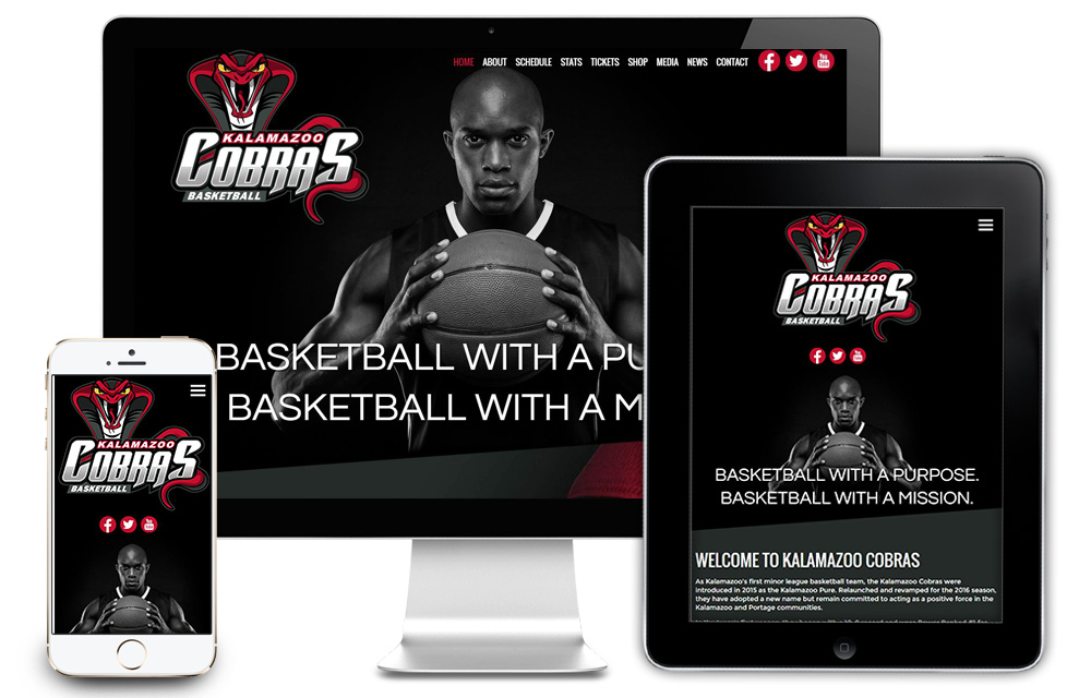 Kalamazoo Cobras Web Design
